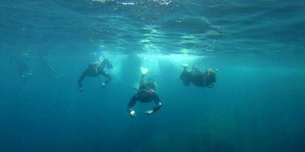 Fodo de Eco-Snorkel a les Illes Medes
