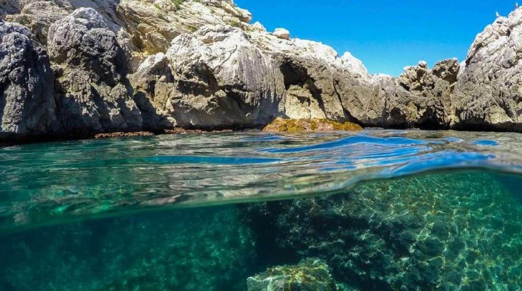 Fodo de Eco-Snorkel a la Costa del Montgrí