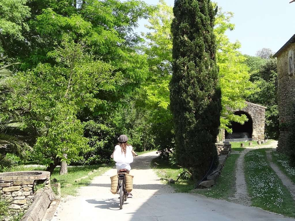 Ruta paisatges de Pals amb bicicleta elèctrica<br /><strong>Burricleta, sortida 10.00h <strong class='extra_info_articulo'>- desde 35.00 €  </strong></strong>