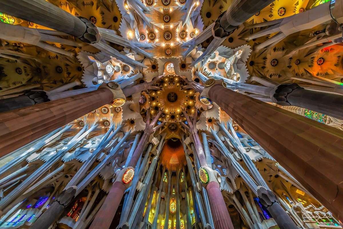 Fodo de Barcelona City Tour + Sagrada Familia